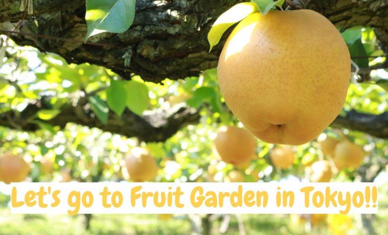 Lets go to fruit garden