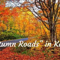 Autumn roads in Kanto Cover